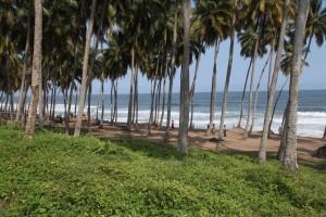 Nzulezu coast
