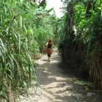 Lake Bosumtwi near Kumasi around the lake walking tour
