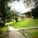 Cocoa Village garden