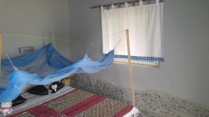Cocoa Village Guesthouse Family atta kwame house - bedroom