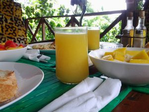Cocoa Village Guesthouse special breakfast - all fresh seasion fruits