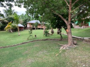 Cocoa Village Guesthouse garden with wooden dormitory house and atta kwame bungalow in the background
